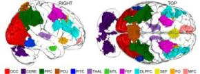 How and Where Imagination Occurs in Human Brains